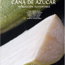 Caña De Azúcar: Producción Sustentable