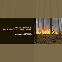 Impacto Ambiental de Incendios Forestales