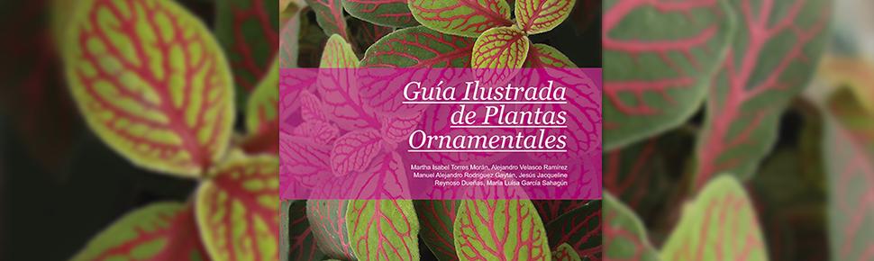 Guía Ilustrada de Plantas Ornamentales