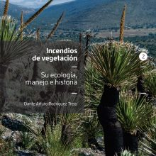 Incendios de vegetación: su ecología, manejo e historia, Tomo II