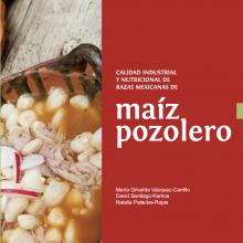 Calidad industrial y nutricional de razas mexicanas de maíz pozolero
