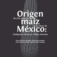 Origen de tres razas de maíz de altura de México: Chalqueño, Cónio y Cónico Norteño